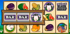 Online Slots Bonus Features