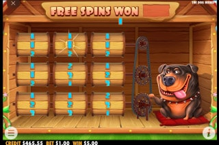 The Dog House Slot Bonus Feature
