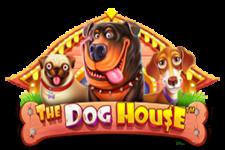 Its Monetary Mayhem in The Dog House, New from Pragmatic Play