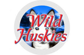 Wild Huskies Slot at PlayNow Casino